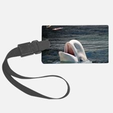 Beluga Whales 5 Luggage Tag