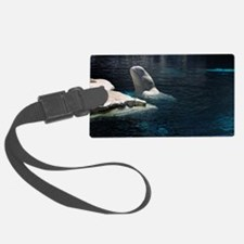 Beluga Whales 4 Luggage Tag