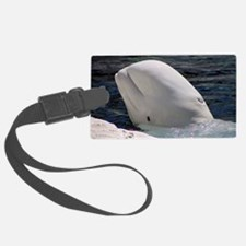 Close up of a Beluga Whale Luggage Tag
