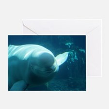 Close up of a Beluga Whale 3 Greeting Card