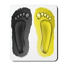 steelers flip flops Mousepad