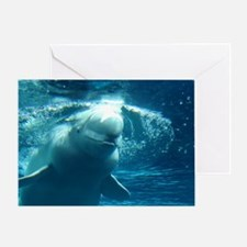 Close up of a Beluga Whale 5 Greeting Card