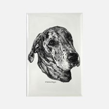 Merle Dane Rectangle Magnet