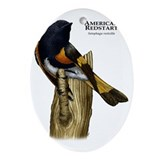 American redstart Oval Ornaments