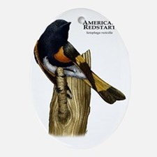 American Redstart Oval Ornament
