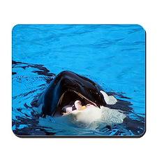 killer whale 5 Mousepad