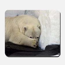 Polar Bear peeking out from behind his p Mousepad