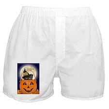 kids_t Boxer Shorts