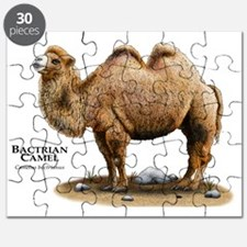 Bactrian Camel Puzzle