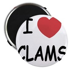 CLAMS Magnet