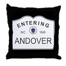 Unique Phillips andover Throw Pillow