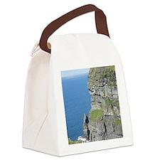 DSCN1448 Canvas Lunch Bag