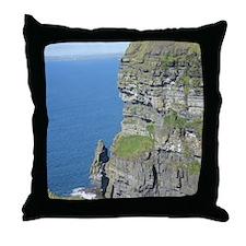DSCN1448 Throw Pillow