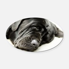 mastiff Oval Car Magnet