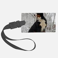 Bernese Mountain Dog Luggage Tag