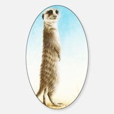 Meerkat Standing (Kindle Sleeve) Bumper Stickers