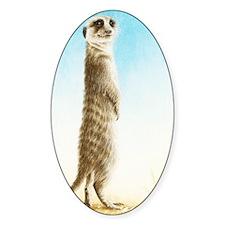 Meerkat Standing (Kindle Sleeve) Decal