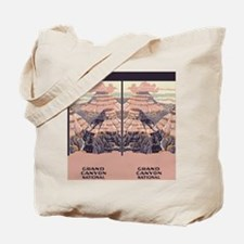 flip_flops_travel_grand_canyon Tote Bag