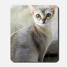 toocheri Mousepad