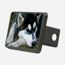 Siberian Husky Dog Hitch Cover