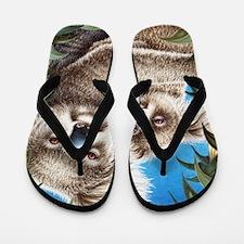 Koala Together Stad Blanket (100res) Flip Flops