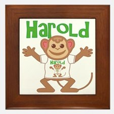 harold-b-monkey Framed Tile