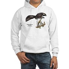 Philippine Eagle Hoodie