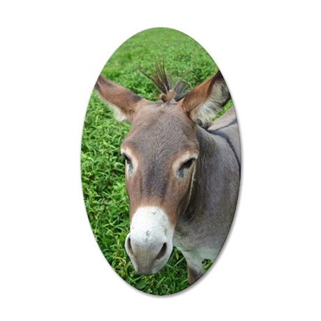 6604 Mule 2 35x21 Oval Wall Decal