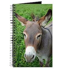 6604 Mule 2 Journal