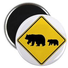 Bears Magnet