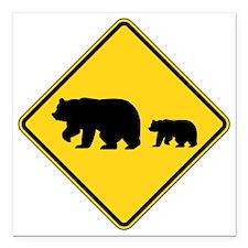 "Bears Square Car Magnet 3"" x 3"""