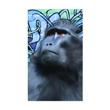 Card-Black-Macaque Decal