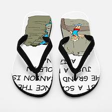 ANTHROPOLOGY Flip Flops