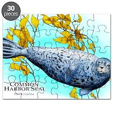 Common Harbor Seal Puzzle