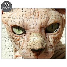 Spookypooky Puzzle