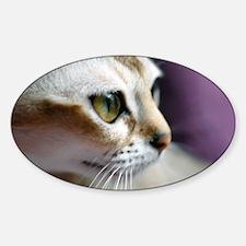 mir115 Sticker (Oval)