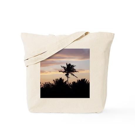 102_2095 Tote Bag