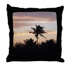 102_2095 Throw Pillow
