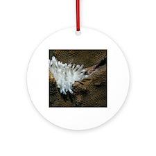 anenome white Round Ornament