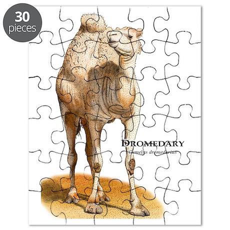 Dromedary Puzzle