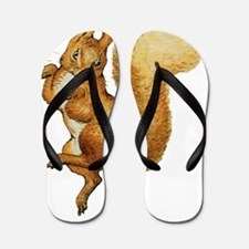 Squirrel Nutkin_Beatrix Potter015 Flip Flops
