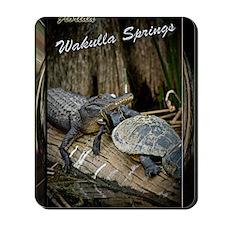 Wakulla Springs Mousepad