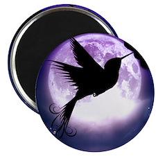 Moonlit Hummingbird Magnets