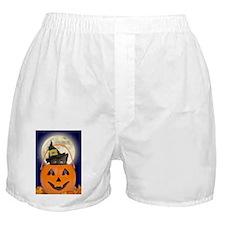 kids_t2 Boxer Shorts