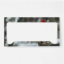 CA11.06x6.637 License Plate Holder