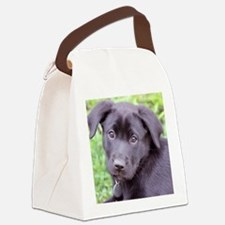 Lilly 7-13-11 11 Canvas Lunch Bag