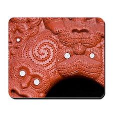 Rotorua. Traditional Maori wood carving  Mousepad