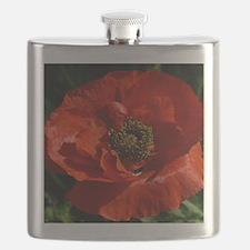 Vibrant Red Poppy Flask