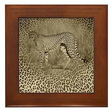 Cheetah Dreams Framed Tile