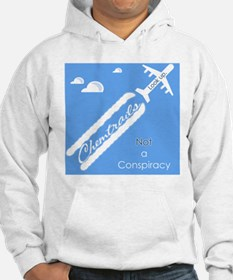 chemtrailsposter Hoodie